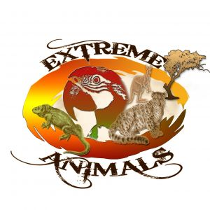 Extreme Animals of Florida